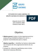 OB Estudio de Clima Laboral pp