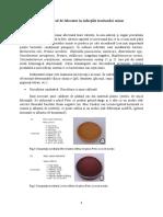 Microbiologie LP7