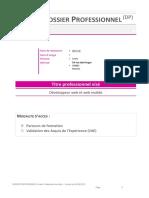 DOSSIER PRO - WIS 3 - BESSE LOUIS.pdf