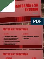 Factor vía y su entorno cap 3