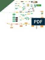 Mapa Conceptual Niveles de la Materia