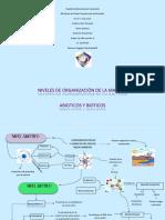 mapa mental de la materia