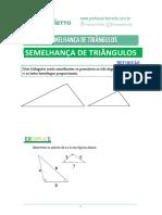 06 - Semelhança de Triângulos - Teoria
