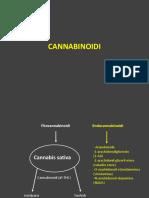 Cannabinoidi-e-Allucinogeni-AA-2018-2019