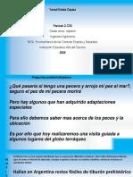 Clase de Biología y Sociales.pdf