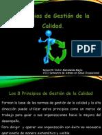 actividad 1. 8 Principios de Calidad.pptx