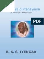 luz-sobre-o-pranayama-livro-completo