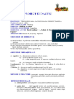 proiectabilitatipractice_salatadefructe