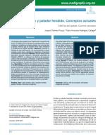 Labio y paladar hendido. Conceptos actuales.pdf