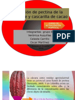 326701377-Extraccion-de-Pectina-de-La-Cascara-de-y