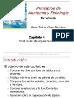 CAPITULO 4 TEJIDOS TORTORA