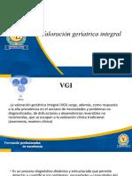 vgi (2)