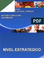 301278619-SGSST-Sector-Flores