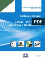 Livro 1 gestao-introducao-principios-fundamentos