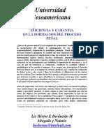 Eficiencia y Garantía en el Proceso Penal y su formación
