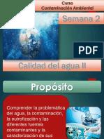 Semana2_ContaminaciónAgua_CAmbiental.pdf