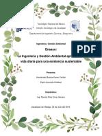 Ensayo Ing. y Gestión Ambiental