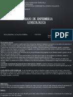 PEDRO 3 GINECOLOGIA.pptx