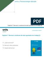 Presentacion Cap 7 Burnout_1-5