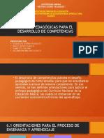 Orientaciones Pedagógicas Para El Desarrollo de Competencias