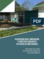 Libro_Vulnerabilidad_RIER.pdf