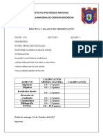 balance-de-fermentacion.docx