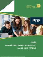 Comité Paritario de Seguridad y Salud en el Trabajo.pdf