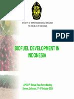apec_200810_Bio Energy.pdf