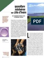 Laquaculture_du_machoiron_en_Cote_dIvoire.pdf