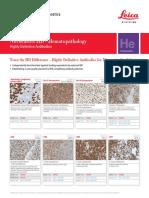 Novocastra_HD-Hematopathology_Flyer