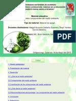 componentesdelmedioambiente-150519183754-lva1-app6892.pdf