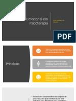 RegulaçãoEmocional.pdf