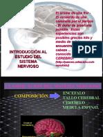 1._INTRODUCCION_SISTEMA_NERVIOSO