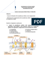 Cuestionario-Membrana-Celular (3)