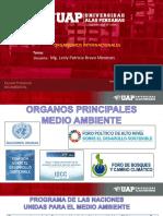 SEMANA 7 LOS ORGANISMOS INTERNACIONALES