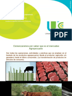 MERCADEO AGROPECUARIO (1)