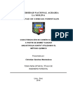 carbon -bambu-tesis.pdf