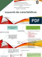 ESQUEMA DE CRUZ FARFAN.pdf