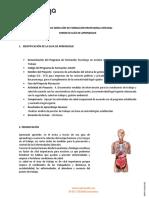 GUIA APT PVE (1).pdf