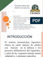 PATOLOGIA DEL SISTEMA MONONUCLEAR FAGOCITICO 15 de juni