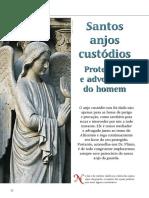 1002 Stos Anjos Custodios _ RevDrPlinio