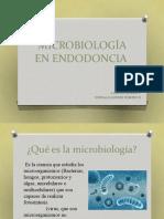 MICROBIOLOGÍA EN ENDODONCIA GONZALO R Y SOFIA Actulizado.pptx