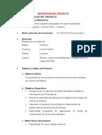 GRUPO 11- TRABAJO DE EXPEDIENTE TECNICO.docx