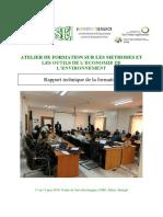 Rapport_Atelier_formation_outils_economie_environement_juin2019
