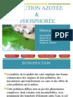 Pollution azotée et phosphatée (gg2)