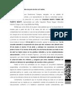 FALLO DE RECURSO DE PROTECCION ROL 678-2020  CORTE PTO. MONTT