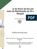 Técnica de Alívio da Dor por meio da Mobilização do Qi e Sangue. Professor_ Paulo Amorim