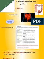 5BAS_PPT_Egestión_síntesis_pptx