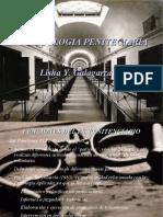 11 PSICOLOGIA PENITENCIARIA