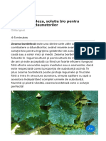 Zeama bordeleza  solutia bio pentru combaterea daunatorilor
